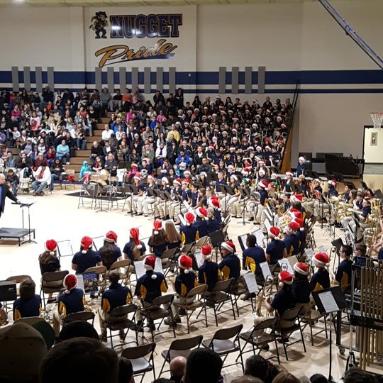Band Playing at Winter Concert